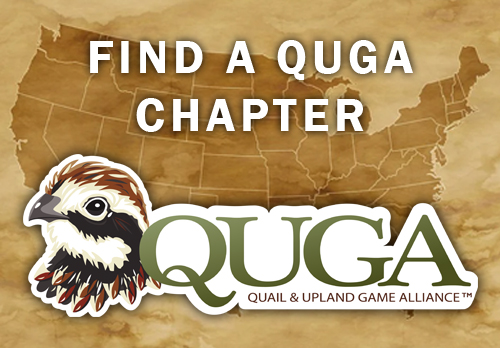 QUGA Chapters